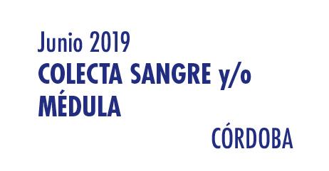 Registrarte como donante de médula en Córdoba en Junio 2019