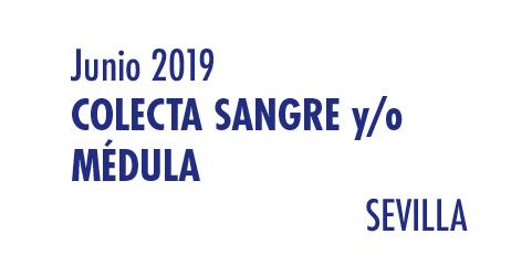Registrarte como donante de médula en Sevilla en Junio 2019
