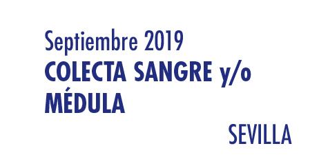 Registrarte como donante de médula en Sevilla en Septiembre 2019