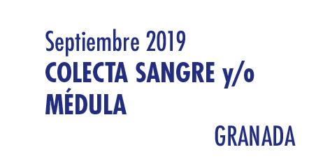 Registrarte como donante de médula en Granada en Septiembre 2019
